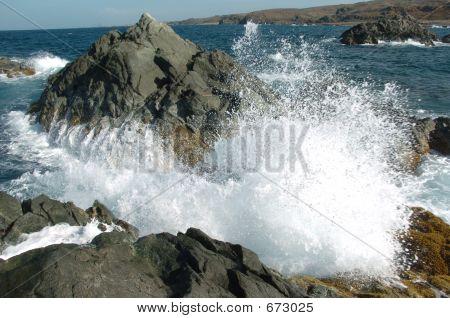 Splash 2
