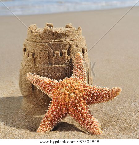 a starfish and a sandcastle on the sand of a beach
