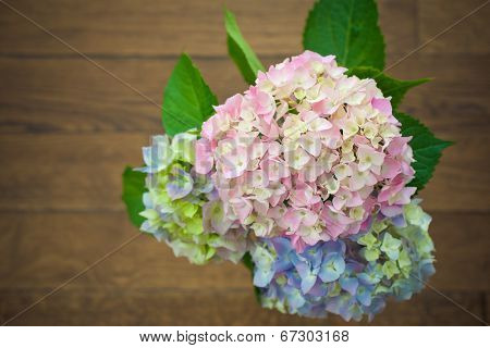 Bouquet. Hydrangea flower