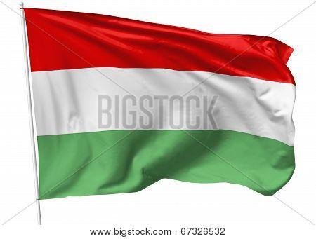 Flag Of Hungary On Flagpole