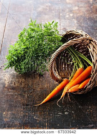 Fresh Carrots In Basket On Wooden Background