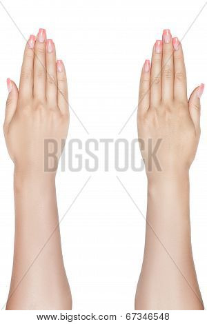 Beautiful Female Hands.