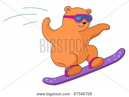 Teddy-bear on a snowboard