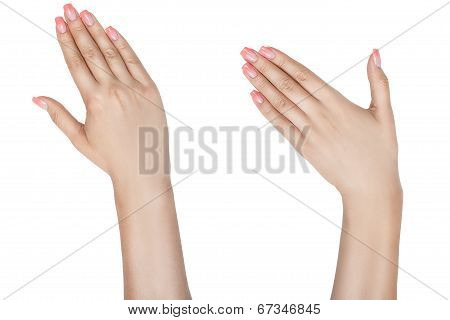Left And Right Female Hand.