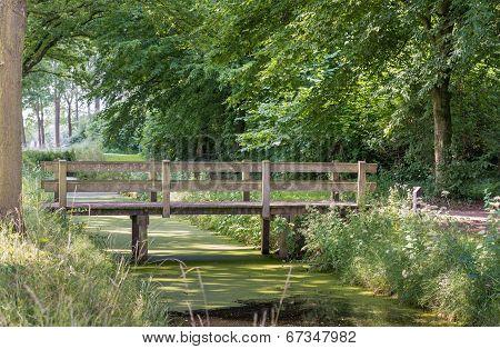 Small Wooden Bridge In A Park