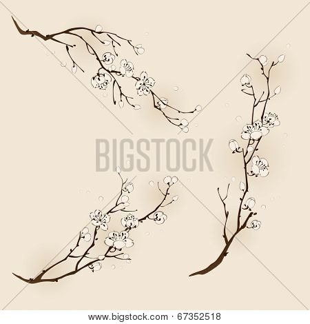 Plum blossom with line design in three different compositions
