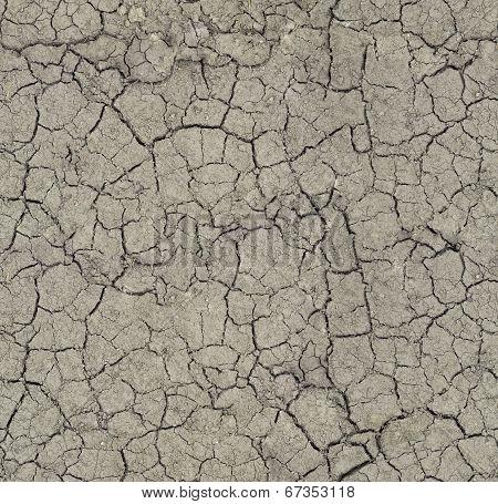 The Cracks Ground Texture.