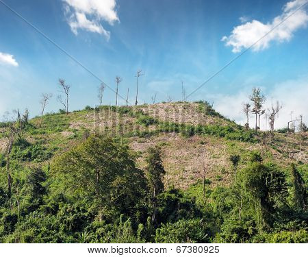 Deforestation nature background. Cut trees on hills of tropical rain forest in Laos, Asia.