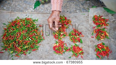 Chili pepper on local market on streets of Luang Prabang, Laos, Asia