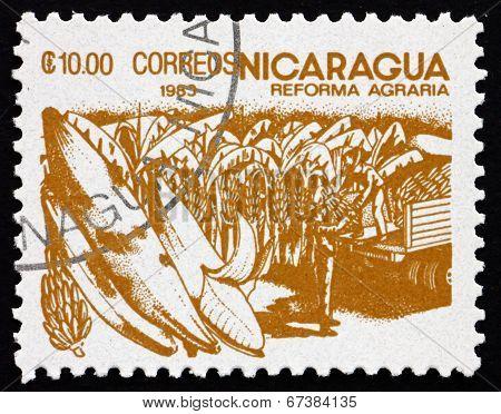 Postage Stamp Nicaragua 1983 Bananas, Agrarian Reform