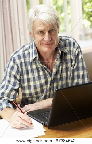 Mid age man working in home office