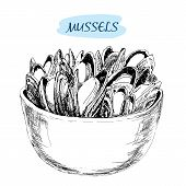 stock photo of dainty  - Mussels - JPG