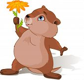 stock photo of groundhog day  - A cartoon groundhog holding a first spring flower - JPG