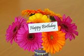 foto of gerbera daisy  - Happy Birthday card with colorful gerbera daisies bouquet - JPG