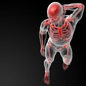 stock photo of radiation therapy  - 3d render skeleton by X - JPG