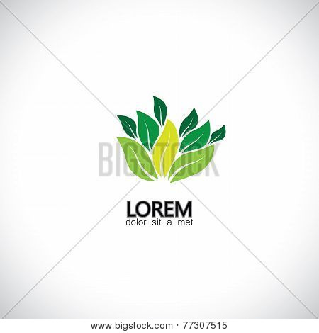 Evergreeen Leaves Icon of  Plants In Forest - Eco Concept Vector