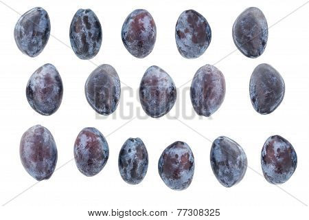 Plums on a White background