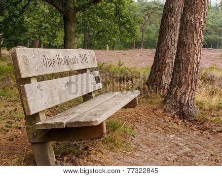 Lonely Bench In Dutch Heathland