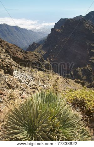 Volcanic Landscape In La Palma. Caldera De Taburiente. Spain