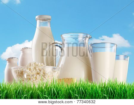 Dairy products on the grass. Background - sunny skies.