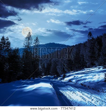 Snowy Road To Coniferous Forest In Mountains At Night