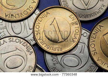 Coins of Slovenia. Slovenian one tolar coin.