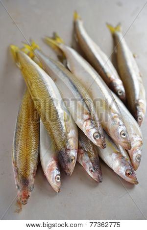 Raw smelt fishes on a table