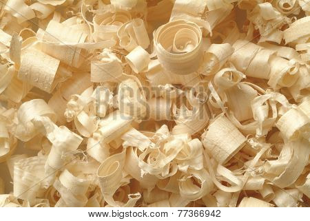 wood shaving, texture of natural material