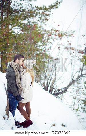 Young amorous couple kissing in winter forest