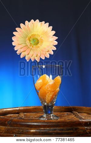 Tropical collection: Sliced orange in glass