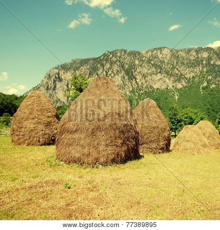 Rural Landscape With Haystacks