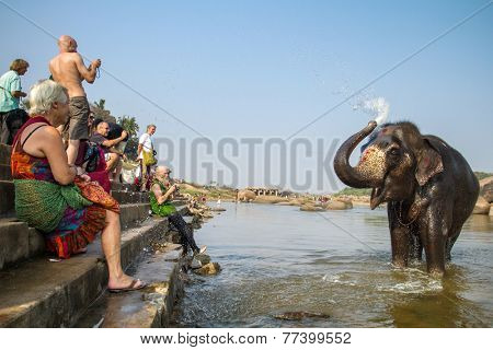 HAMPI, INDIA - FEBRUARY 1, 2013: Unidentified tourists watching Lakshmi, the temple elephant, taking a bath in the river on February 1, 2013 in Hampi, Karnataka, India