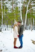 stock photo of amor  - Young amorous couple in winterwear having date outside - JPG