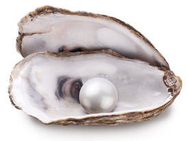 pic of pearl-oyster  - Open oyster with pearl isolated on white background - JPG