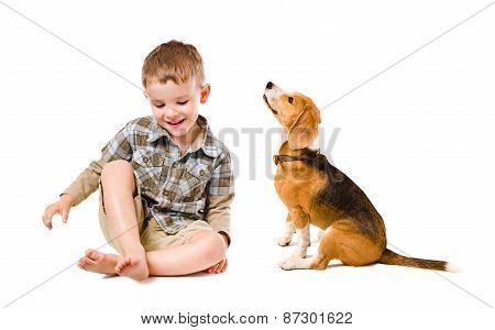 Cheerful boy sitting with beagle dog
