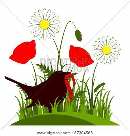 Meadow Flowers And Bird