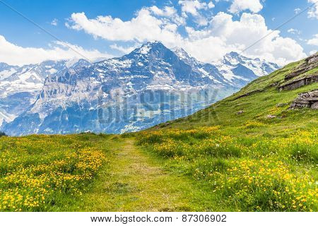 On The Hiking Path Towards Eiger North Face