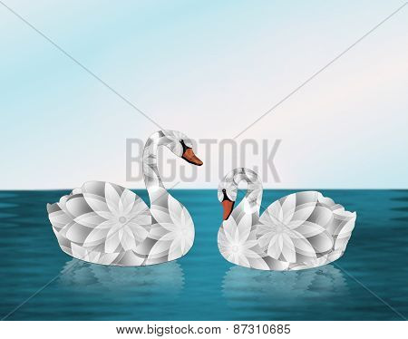 Pair of White Swans on Lake