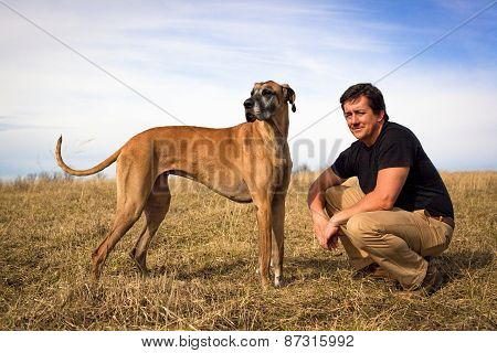 Handsome man with great Dane in field
