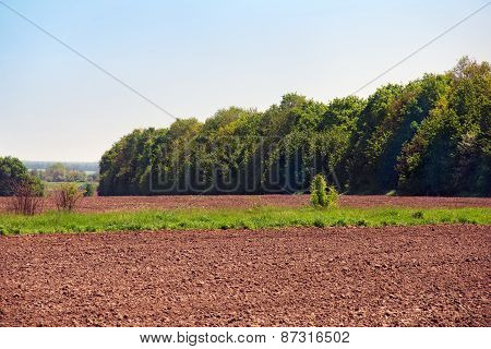 Plowed Land With A Strip Of Green Grass And Trees