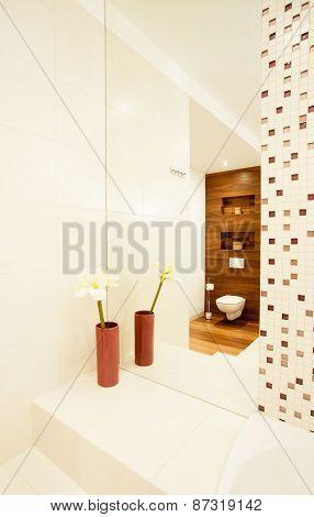 Esthetic Design