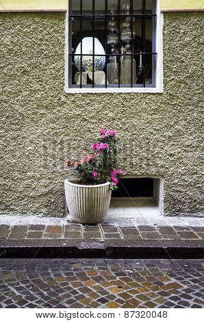 House facade with flowers pot. Color image