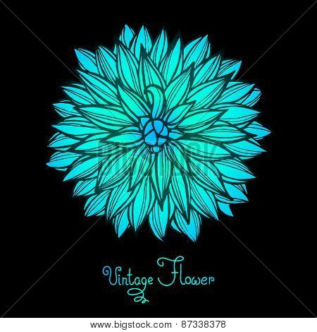Bright Dahlia Flower Isolated for design.