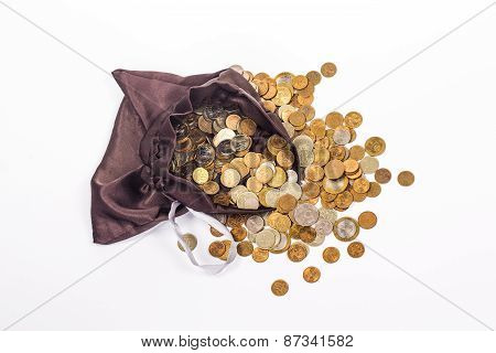 silk brown bag with gold coins