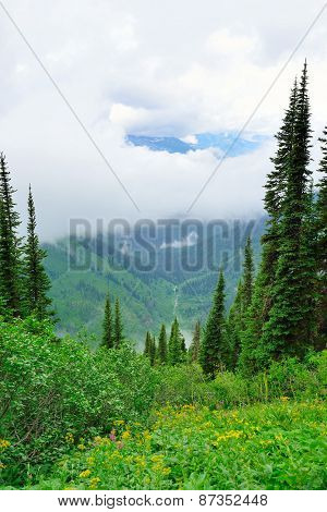 High Alpine Landscape Of The Glacier National Park