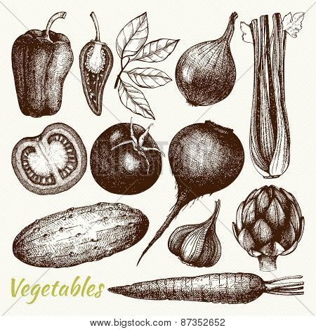 Vegetables -  Healthy food vector illustration.