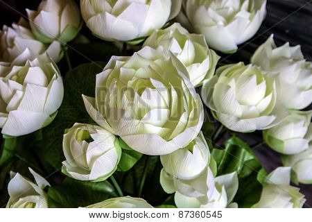 Closeup Of The White Frabic Lotus