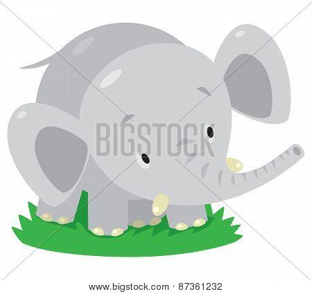 Little funny elephant or jumbo.