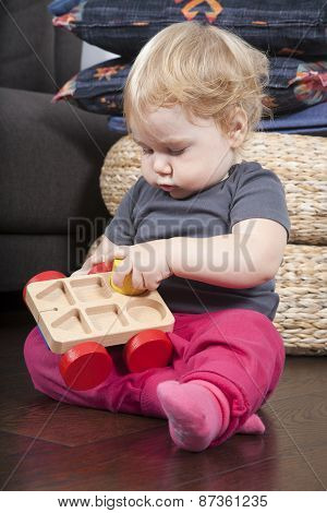 Baby Placing Forms