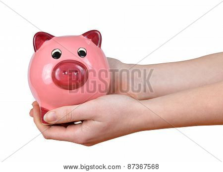 Woman hands holding a pink piggy bank